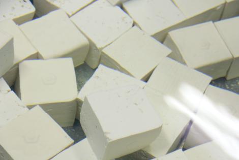 日ごとに変化する味、<br /> 福田の豆腐はおもしろい。